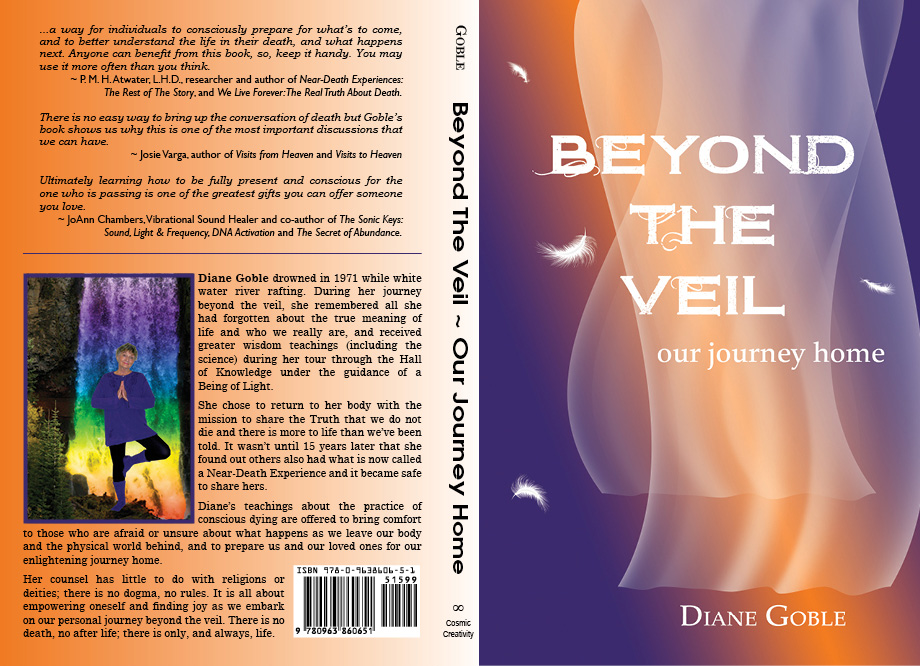 Beyond the Veil Book Cover